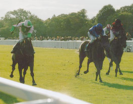 2010 Distance memories - Winter Hill stakes Group 3 at Windsor