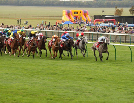 Prince of Johanna wins the Cambridgeshire at Newmarket 2011