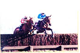 1998 Ask Tom - Game Spirit Chase at Newbury - Grade 1