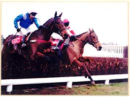 1997-  Ask Tom - Victor Chandler Chase at Kempton - Grade 2