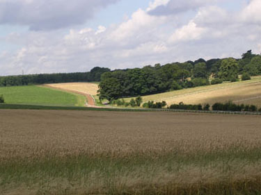 Fields around Castle Farm