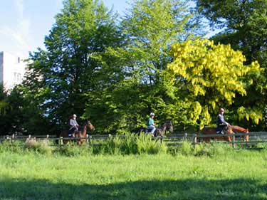 Riding in the nearby grounds