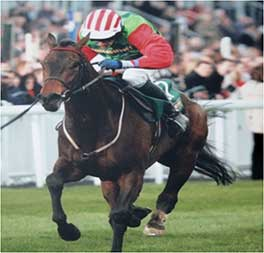 2008 - Honest John - The John Smiths Champion National Hunt Flat Race at Aintree Grade 2