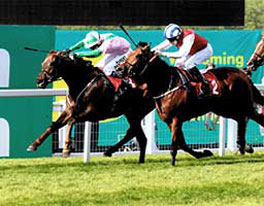2011 Kings Gambit – Gordon Richards Stakes Group 3 at Sandown Park