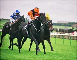 2005 - Welsh Emperor -  Bentinck Group 3 at Newmarket