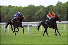 2005 Welsh Emperor Spring Trophy Stakes - Listed